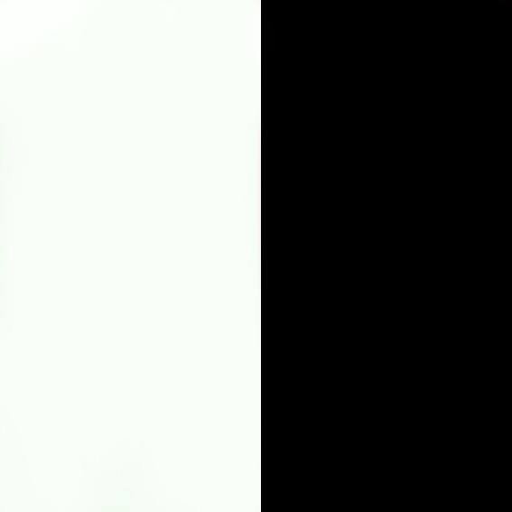 Blanco/Negro